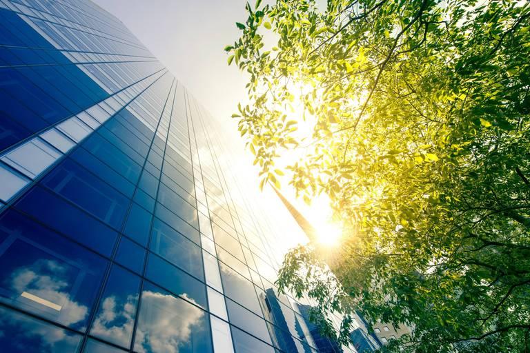 Transition énergétique : la stratégie compétitive pour votre entreprise
