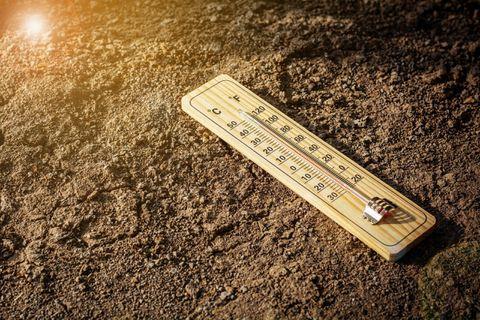 Vague de chaleur sur les provinces de Liège et du Limbourg jusqu'à lundi