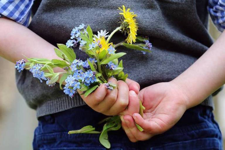 ILLUSTRATION - A four-year-old boy holds wild flowers behind his back in a field in Kaufbeuren, Germany, 6 May 2017. Photo: Karl-Josef Hildenbrand/dpa Reporters / DPA