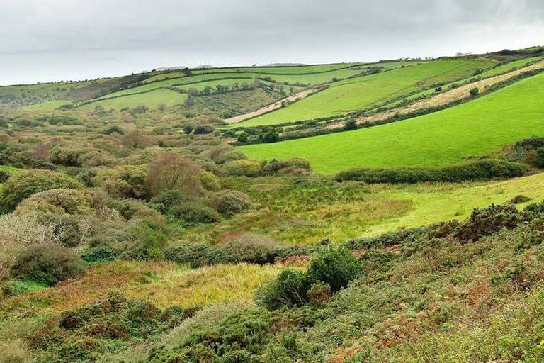 Lush Green Fields On A Landscape Of Rolling Hills; Ireland Reporters / Design Pics