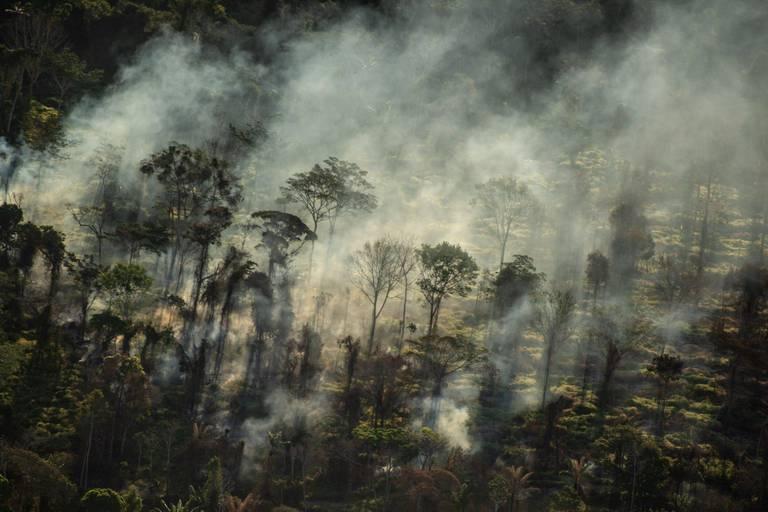 Des incendies illégaux font rage en Amazonie, dénonce greenpeace à travers une série de photos
