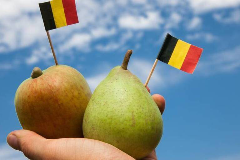 L'écart entre la Flandre et la Wallonie cesse de se creuser mais...