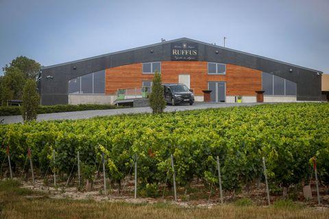 Avec le Chant d'Éole Cuvée et le Genoels-Elderen Zilveren Parel, le Ruffus Chardonnay Brut Sauvage est le seul vin à avoir obtenue la note maximale.