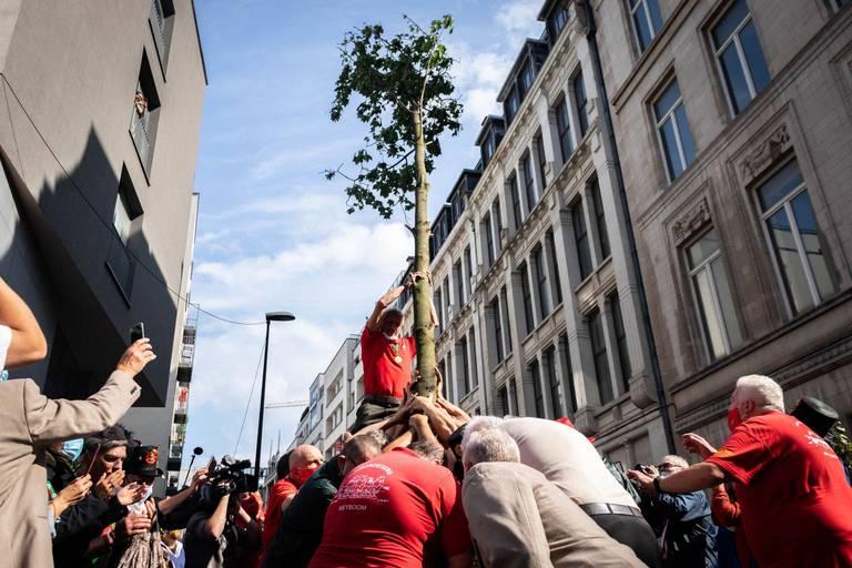Pour la 713e fois, le Meyboom a fait vibrer Bruxelles