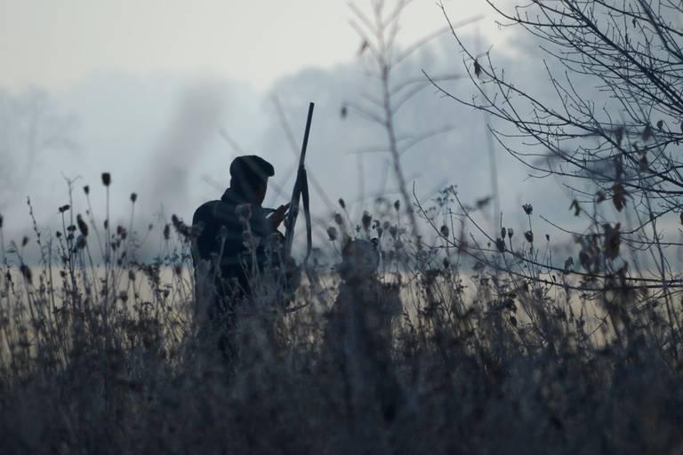 Les dates d'ouverture de la chasse sont fixées en Wallonie