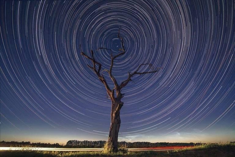 Ces prochaines nuits, regardez les étoiles nous tomber sur la tête