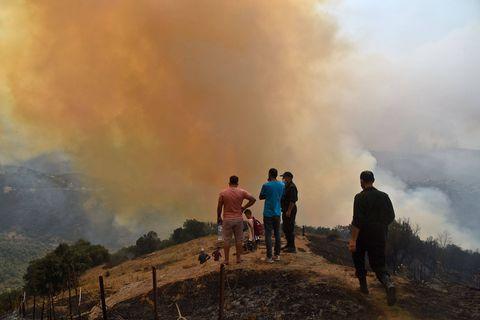 19 incendies encore actifs dans le nord algérien