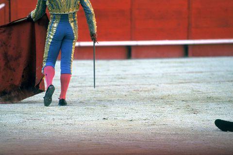 A Nîmes, une exposition sur la tauromachie ouverte aux enfants oppose pro et anti-corrida