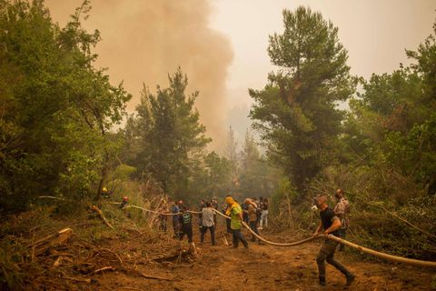 """En Grèce, un incroyable """"corps à corps"""" pour arrêter la course folle de l'incendie d'Eubée"""