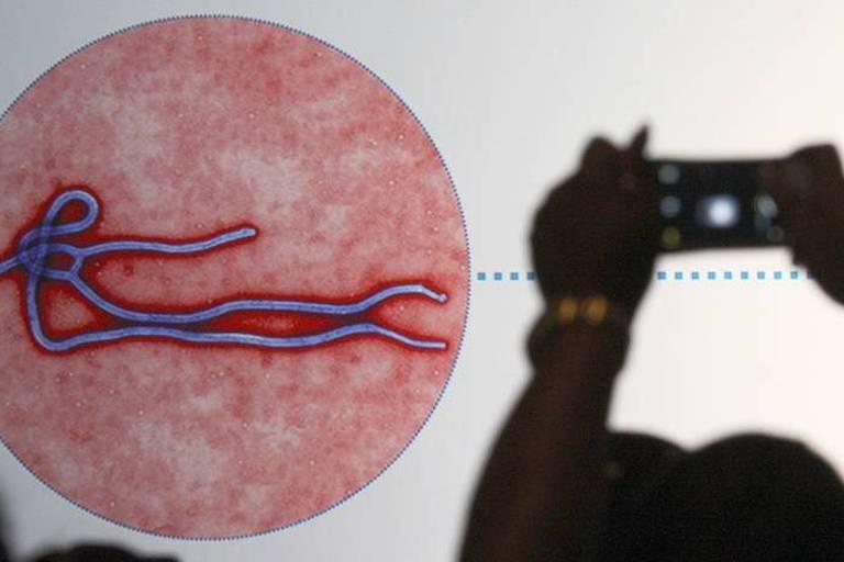 Des échantillons du virus Ebola volés!