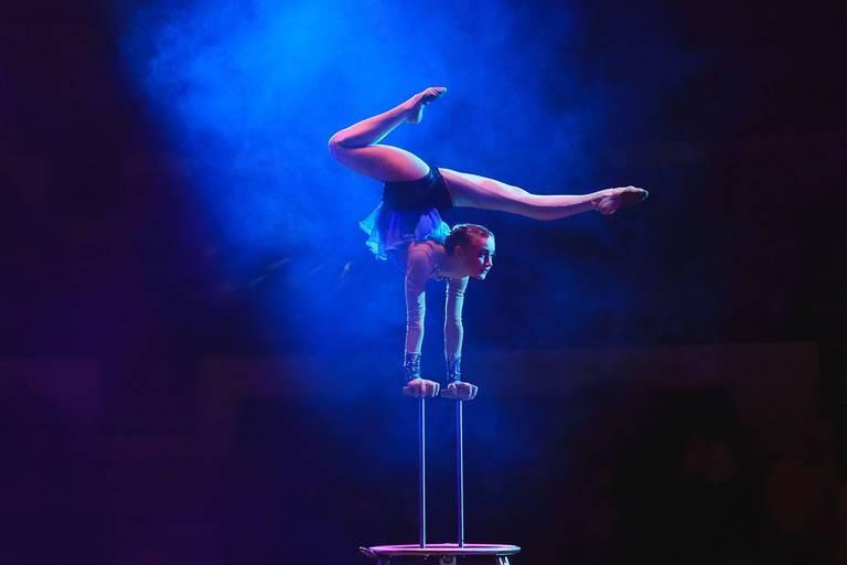 Up, un nouveau nom pour Catastrophe: les arts du cirque rebondissent