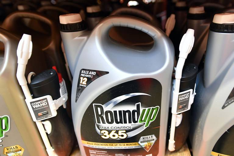 """Procès Monsanto: """"le jour de rendre des comptes"""" est venu"""