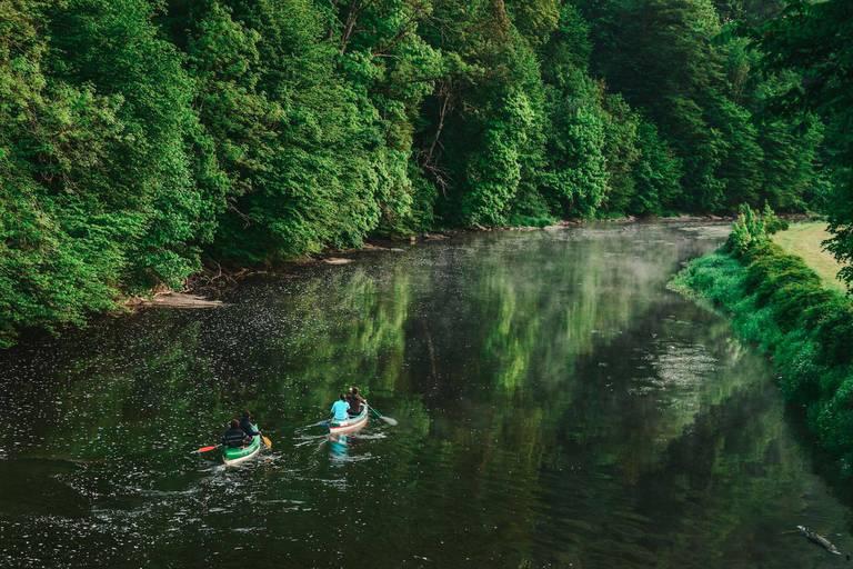 Tourisme : 8 destinations pour être au coeur de la nature en Ardenne