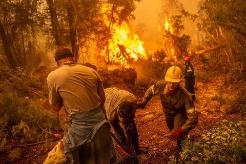 Vagues de chaleur, incendies, inondations... Un été marqué par les catastrophes naturelles