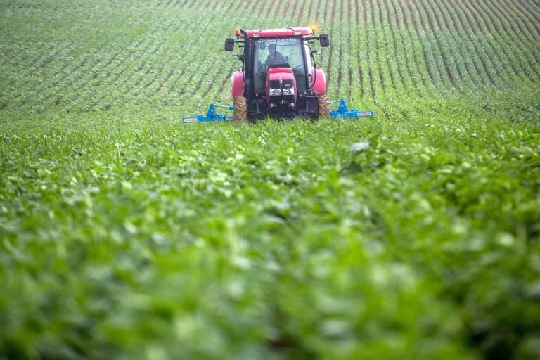 L'Union européenne donne son feu vert pour viser 25% d'agriculture bio d'ici 2030