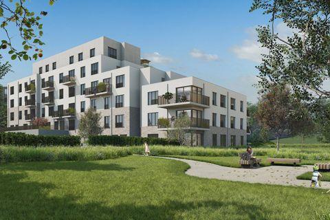 High Park : Un projet de complexe écorésidentiel et de grand parc à Molenbeek et Berchem