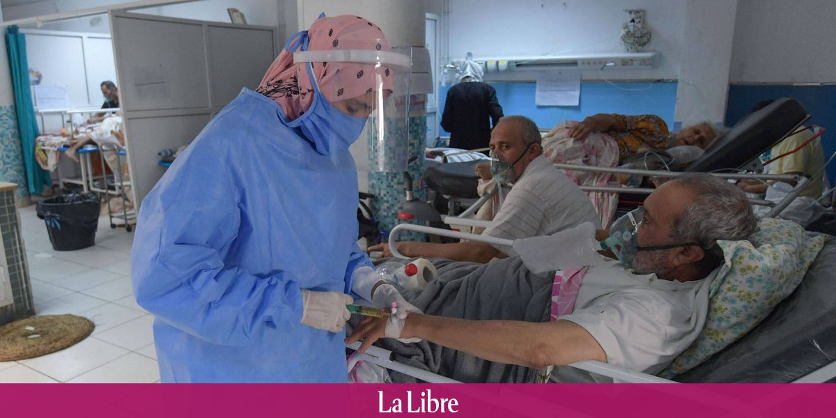 Image Coronavirus : un afflux de dons sauve la Tunisie d'une
