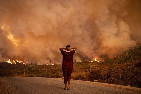 """Algérie: les autorités accusent un """"réseau terroriste"""" après un lynchage dans le cadre des incendies"""