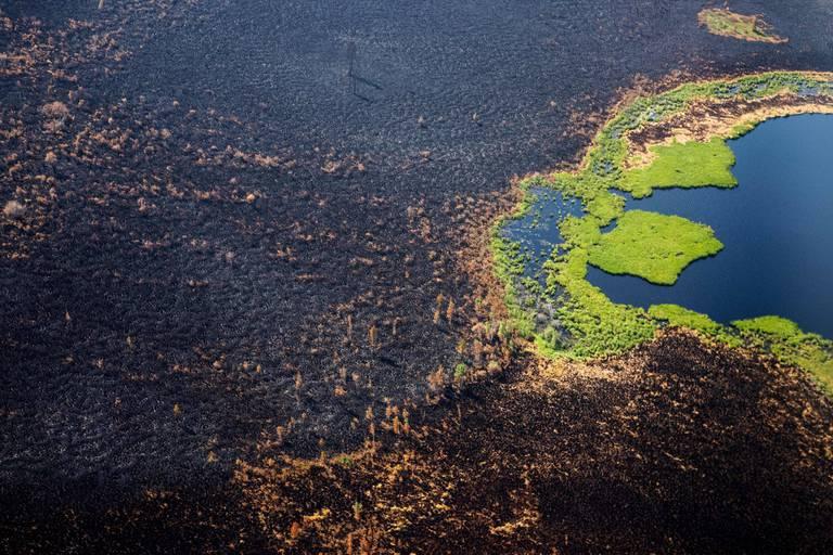 En Sibérie, le changement climatique déchaîne des feux de forêts battant tous les records