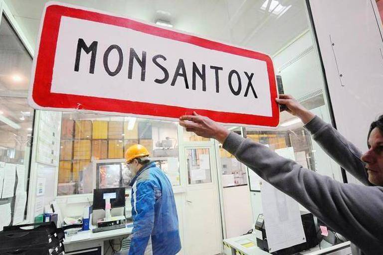 """An anti-GMO (genetically-modified crops) activist holds a town entrance roadsign reading """"Monsantox"""" after anti-GMO activists entered a production site of US agro-chemicals giant Monsanto to protest aganinst the use of GMO crops and ask for the extension of the moratory on MON810 corn, on January 17, 2014, in Trebes, southern France. AFP PHOTO / REMY GABALDA"""