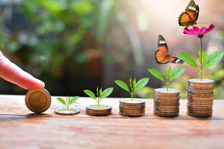 Banque éthique, durable et solidaire : Dans laquelle faut-il investir votre épargne ?
