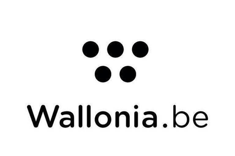 La Wallonie se paye un nouveau logo... Qui ne plaît pas à tout le monde