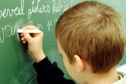 Ecole eleve enseignement classe institutrice immersion linguistique flammand langue neerlandais
