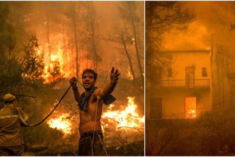 """""""Si le feu passe ici, c'est fini"""": les pompiers luttent pour contenir le feu sur l'île d'Eubée"""